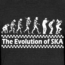 The evolution of SKA