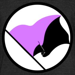 Anarcho-Feminist Flag
