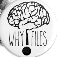 Design ~ 5-Pack Why Files Buttons
