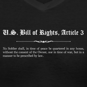 U.S. Bill of Rights - Article 3