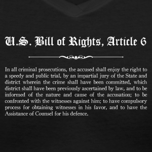 U.S. Bill of Rights - Article 6