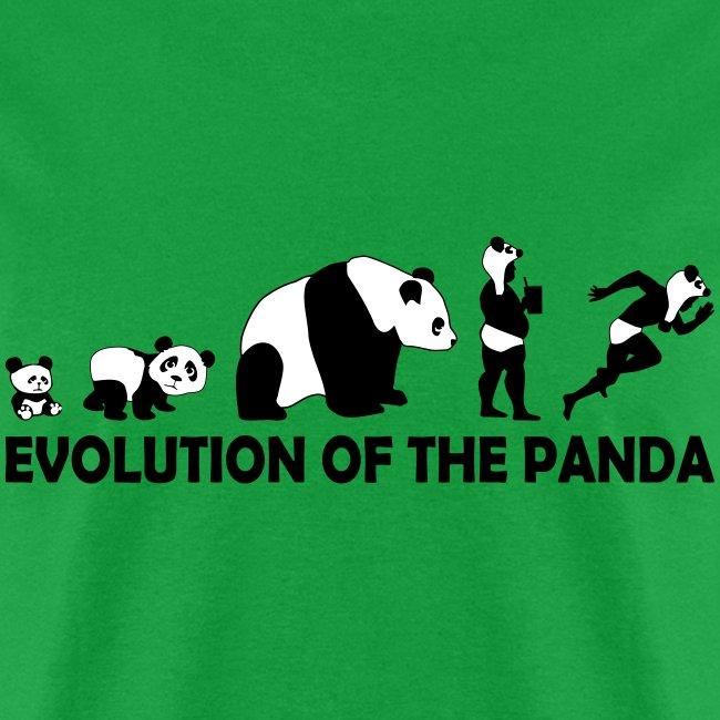 Evolution of the Panda