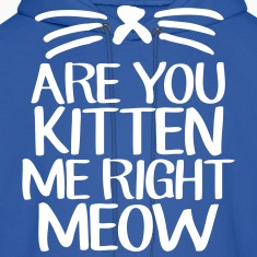 Are You Kitten Me Right Meow Hoodies