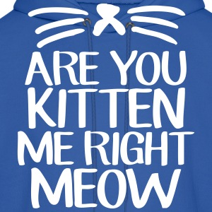 Are You Kitten Me Right Meow Hoodies - Men's Hoodie