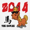 Funny Year of The Horse 2014 T-Shirt - Women's T-Shirt