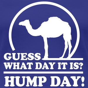 Hump Day. Guess what day it is? Women's T-Shirts - Women's Premium T-Shirt
