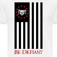 Design ~ Red, White, and Black Flag