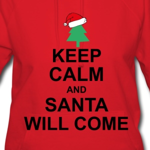 keep calm santa will come Hoodies - Women's Hoodie