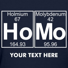 Ho- (homo) - Full Women's T-Shirts