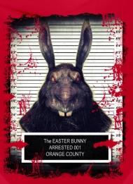 Rabbit solo