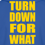Design ~ Turn Down For What Hoodie Hoody Sweatshirt