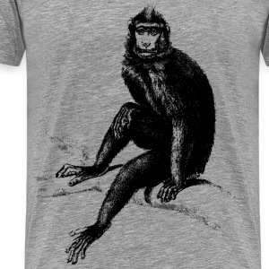 Baboon monkey - Men's Premium T-Shirt