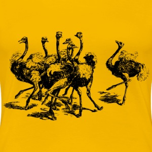 Ostriches - Women's Premium T-Shirt