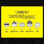 Design ~ Sunny 16 Rule