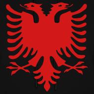 Design ~ Albanian Eagle Hoodie