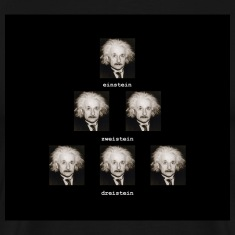 123einstein_black