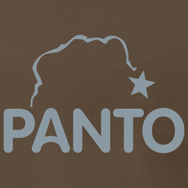 Panto Silver Random Rules
