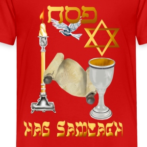 Happy Passover - Toddler Premium T-Shirt