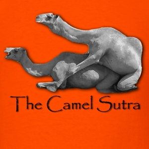 Camel sutra - Men's T-Shirt