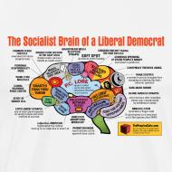 Design ~ Brain map: Liberal vs. Conservative