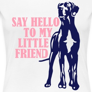 White Say Hello To My Little Friend Plus Size - Women's Premium T-Shirt