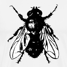 "Insect T-Shirts ""The Fly"""