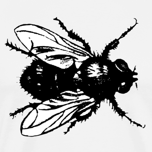 Digital Fly