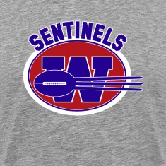 Washington Sentinels - Movie The Replacements