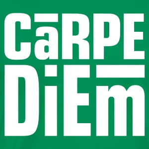 Carpe Diem Light on Heavyweight Shirt - Men's Premium T-Shirt