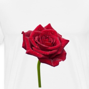 Rose T-Shirts - Men's Premium T-Shirt
