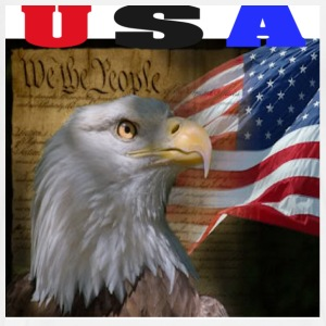 USA We The People Eagle t-shirt - Men's Premium T-Shirt