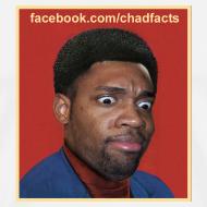 Design ~ Chad Facts