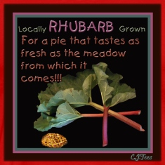 Rhubarb! For a pie that tastes as fresh as the meadow from which it comes!