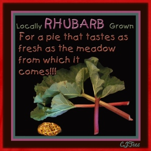 Rhubarb! For a pie that tastes as fresh as the meadow from which it comes! - Men's Premium T-Shirt