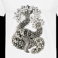 Design ~ Haeckel 05001