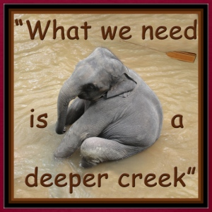 What We Need Is a Deeper Creek - Men's T-Shirt