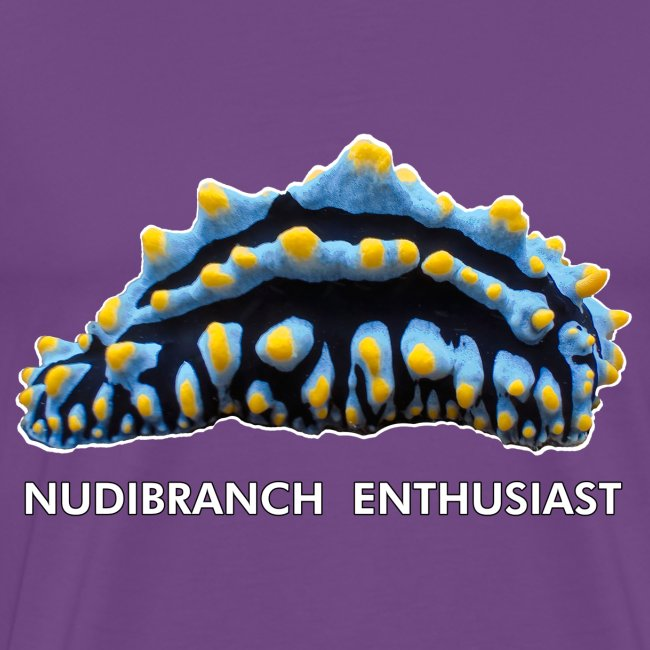 Nudibranch Enthusiast