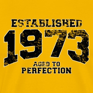 established_1973 T-Shirts - Men's Premium T-Shirt