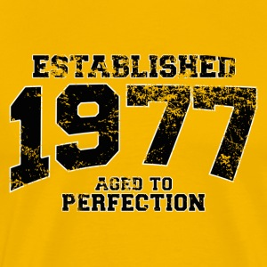established_1977 T-Shirts - Men's Premium T-Shirt
