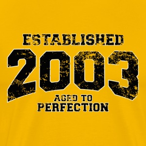 established_2003 T-Shirts - Men's Premium T-Shirt