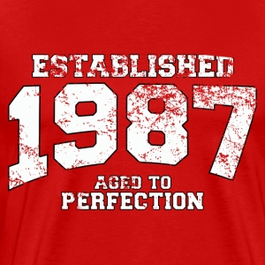 established_1987 T-Shirts - Men's Premium T-Shirt