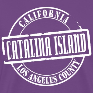 Catalina Island Title B Heavyweight T-Shirt - Men's Premium T-Shirt