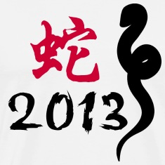 Year of The Snake T-Shirt 2013