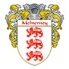 McInerney of Arms/Family Crest - Men's Premium T-Shirt