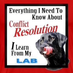 Lab Conflict Resolution