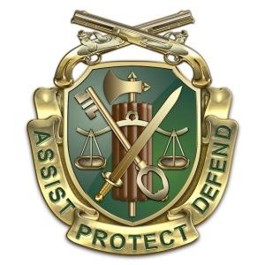 MP Regimental Insignia