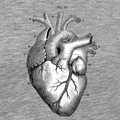 Anatomically correct heart