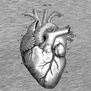 Anatomically correct heart - Men's Premium T-Shirt