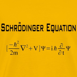Schrödinger equation  - Men's Premium T-Shirt