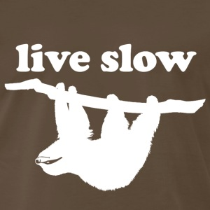 Funny Gym Shirt - Cute Sloth! Live Slow  - Men's Premium T-Shirt